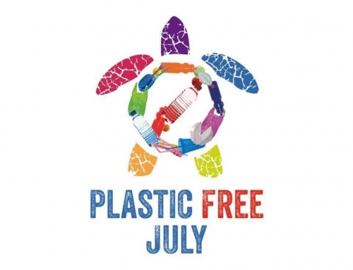 Plastic Free July – месец без пластмаса